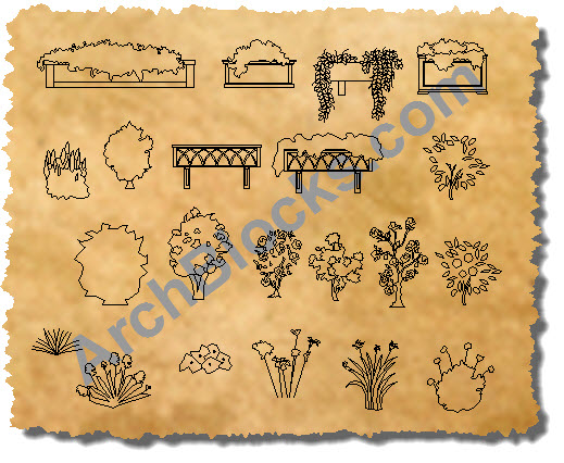 Planter Boxes CAD Symbols Rose Bushes