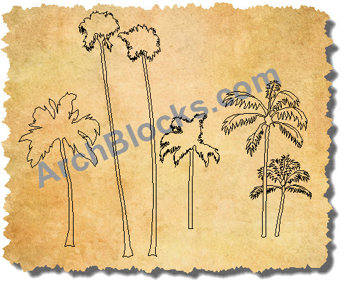 CAD Symbols Palm trees